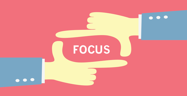 focus lynn small size widget